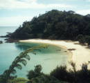 Coromandel Beach